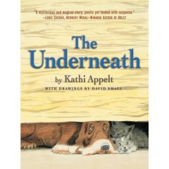 theunderneath Book Review: The Underneath
