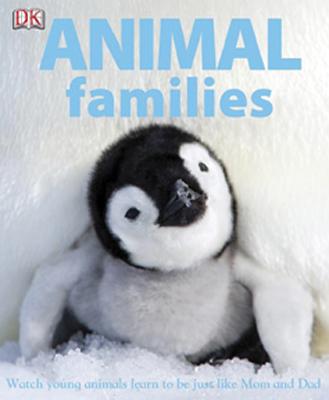 animalfamilies
