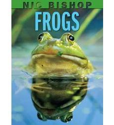 nicbishfrogs1