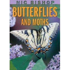 butterfliescov