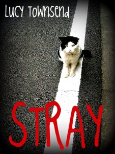 straycover